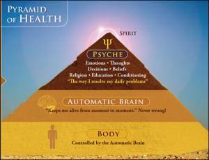 מודל הפרמידה איך נוצרת מחלה